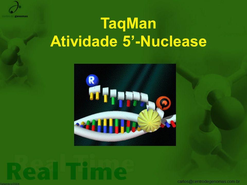 carlos@centrodegenomas.com.br Setembro/2004 TaqMan Atividade 5'-Nuclease