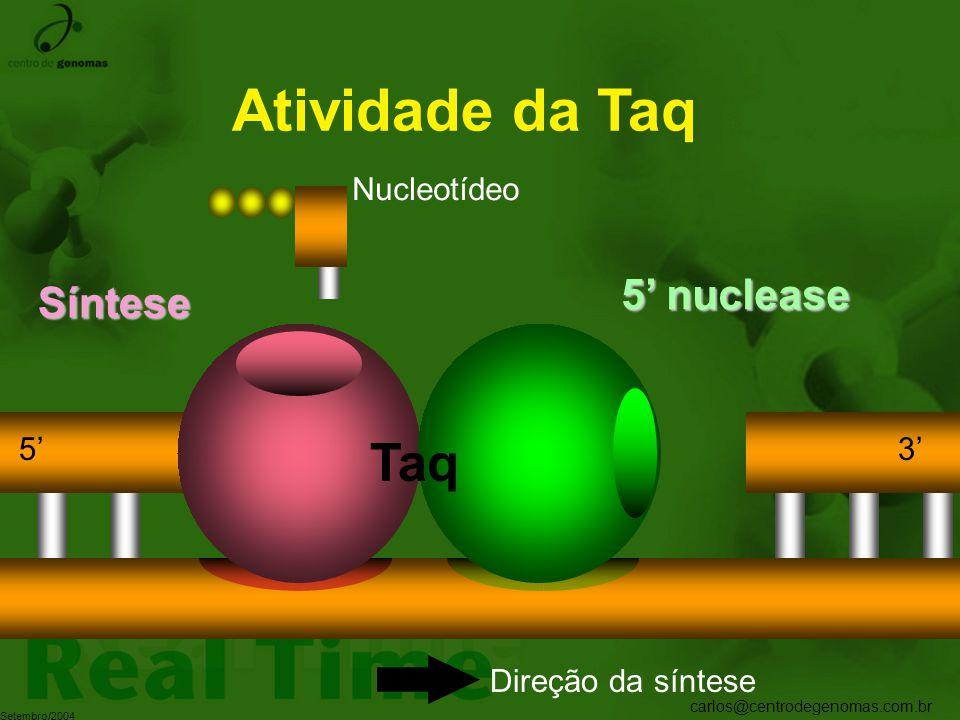 carlos@centrodegenomas.com.br Setembro/2004 Atividade da Taq 5' nuclease Síntese Nucleotídeo Taq 5'3' Direção da síntese
