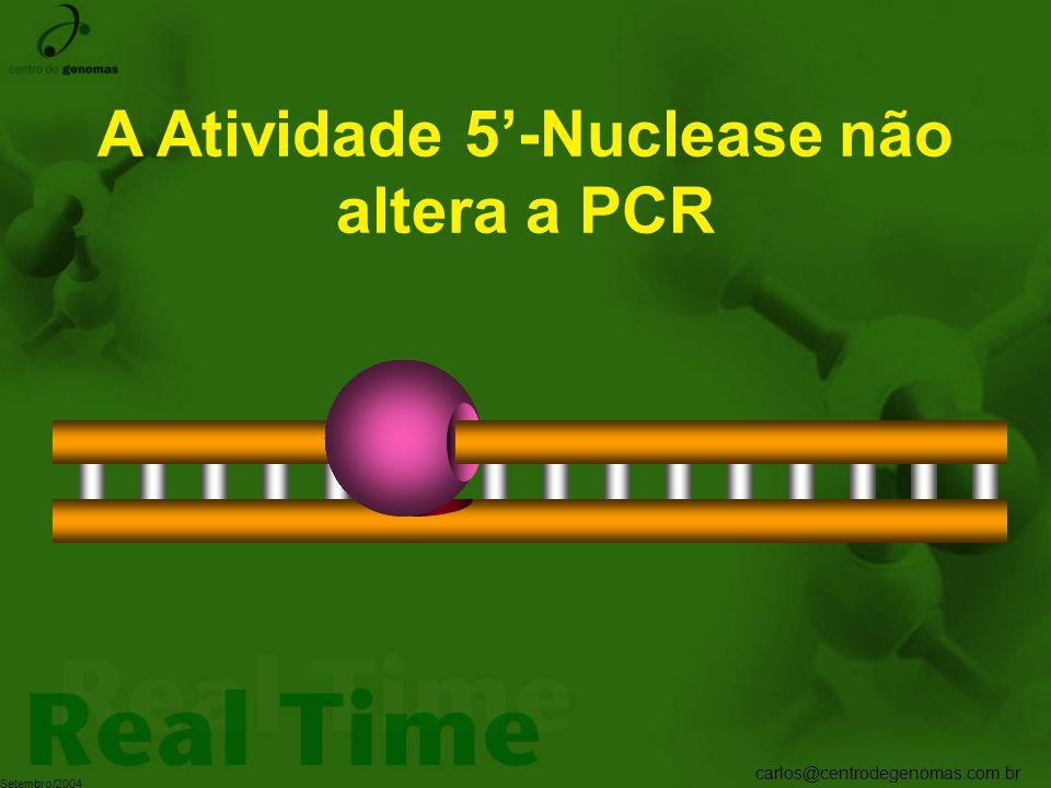 carlos@centrodegenomas.com.br Setembro/2004 A Atividade 5'-Nuclease não altera a PCR
