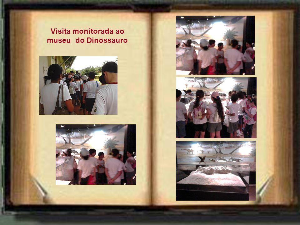 """Saída da escola Chegada a Peirópolis """"... os modos de realizar as atividades, os recursos mobilizados pelos participantes, os materiais utilizados ser"""