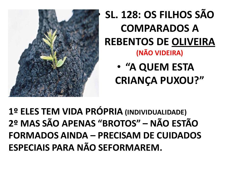 """SL. 128: OS FILHOS SÃO COMPARADOS A REBENTOS DE OLIVEIRA (NÃO VIDEIRA) """"A QUEM ESTA CRIANÇA PUXOU?"""" 1º ELES TEM VIDA PRÓPRIA (INDIVIDUALIDADE) 2º MAS"""