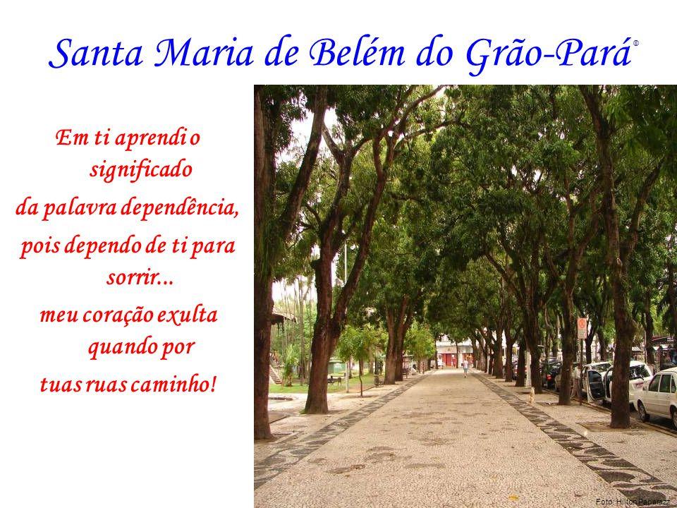 Santa Maria de Belém do Grão-Pará Em ti aprendi o significado da palavra dependência, pois dependo de ti para sorrir... meu coração exulta quando por