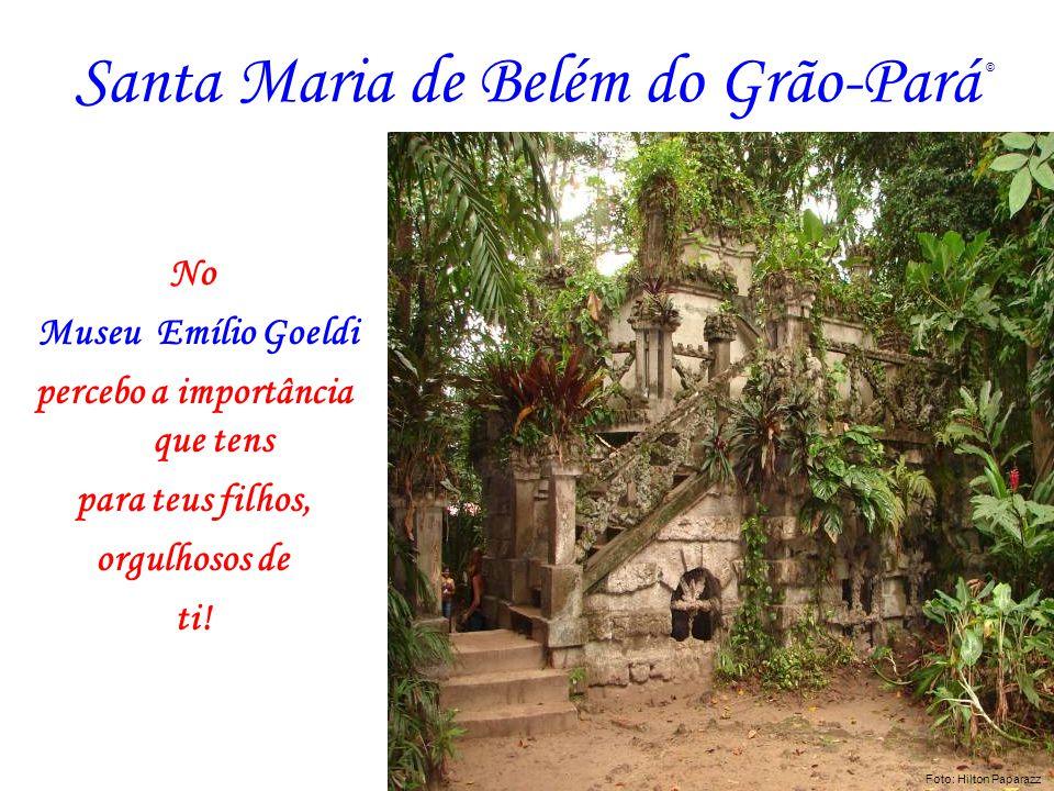 Santa Maria de Belém do Grão-Pará No Museu Emílio Goeldi percebo a importância que tens para teus filhos, orgulhosos de ti! Foto: AZNEGRAO Foto: Hilto