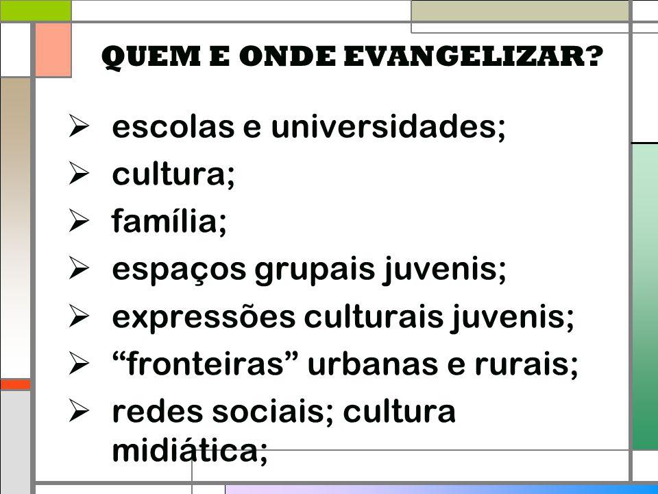 """ escolas e universidades;  cultura;  família;  espaços grupais juvenis;  expressões culturais juvenis;  """"fronteiras"""" urbanas e rurais;  redes s"""