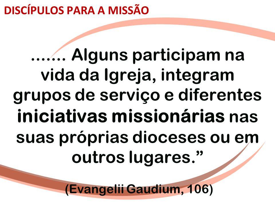 DISCÍPULOS PARA A MISSÃO....... Alguns participam na vida da Igreja, integram grupos de serviço e diferentes iniciativas missionárias nas suas própria