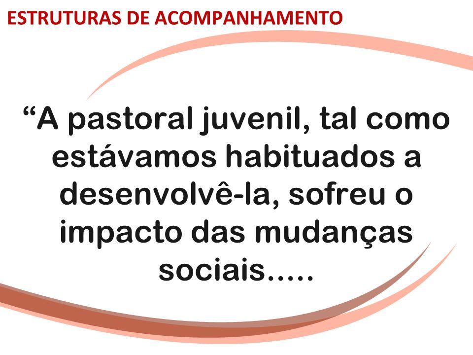 """ESTRUTURAS DE ACOMPANHAMENTO """"A pastoral juvenil, tal como estávamos habituados a desenvolvê-la, sofreu o impacto das mudanças sociais....."""