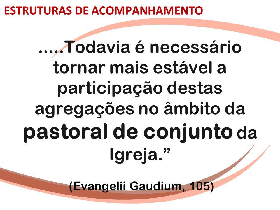 ESTRUTURAS DE ACOMPANHAMENTO.....Todavia é necessário tornar mais estável a participação destas agregações no âmbito da pastoral de conjunto da Igreja
