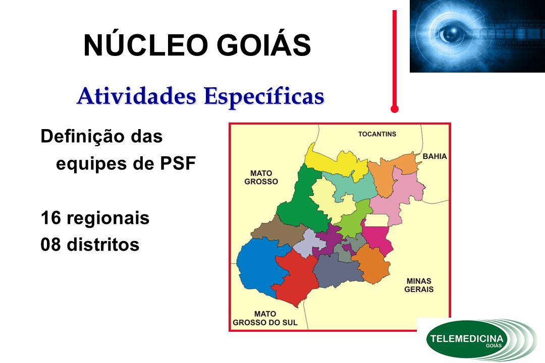 Definição das equipes de PSF 16 regionais 08 distritos NÚCLEO GOIÁS Atividades Específicas