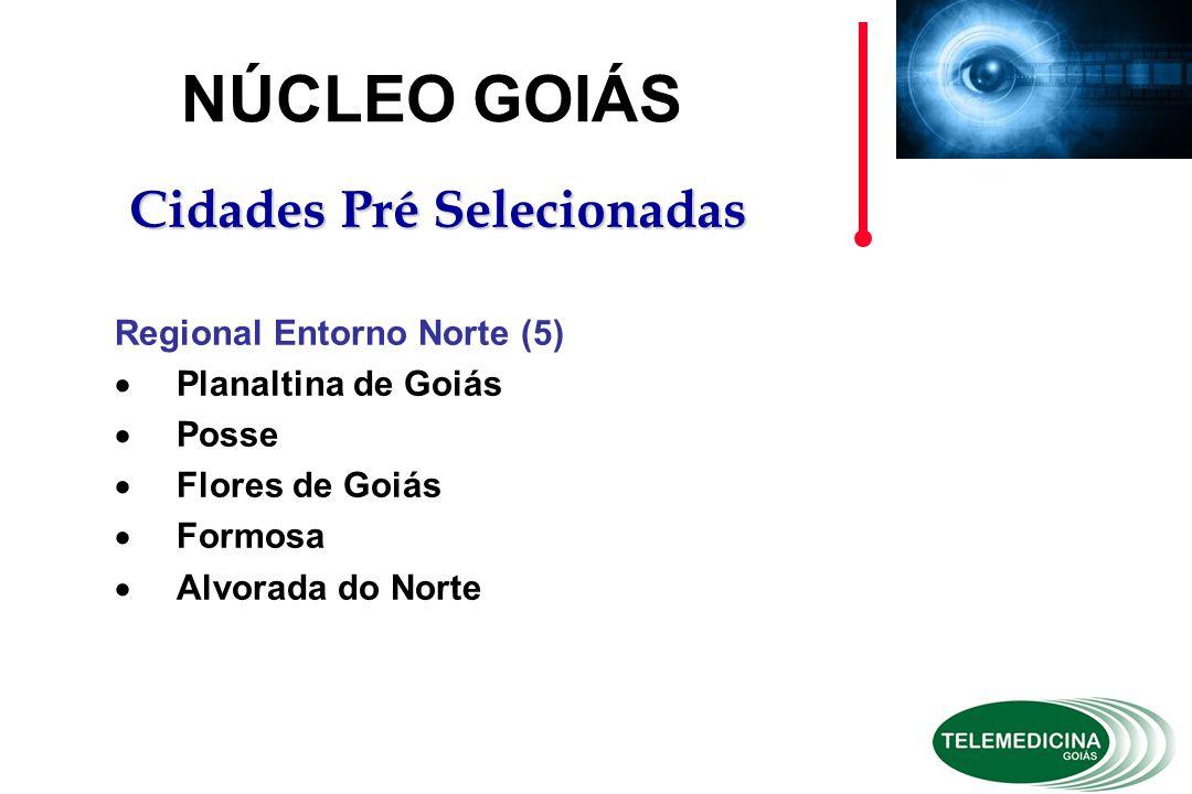 NÚCLEO GOIÁS Cidades Pré Selecionadas Regional Entorno Norte (5)  Planaltina de Goiás  Posse  Flores de Goiás  Formosa  Alvorada do Norte