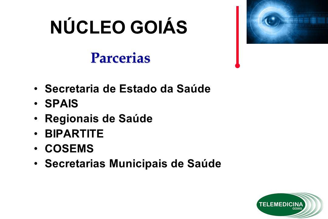 Secretaria de Estado da Saúde SPAIS Regionais de Saúde BIPARTITE COSEMS Secretarias Municipais de Saúde NÚCLEO GOIÁS Parcerias