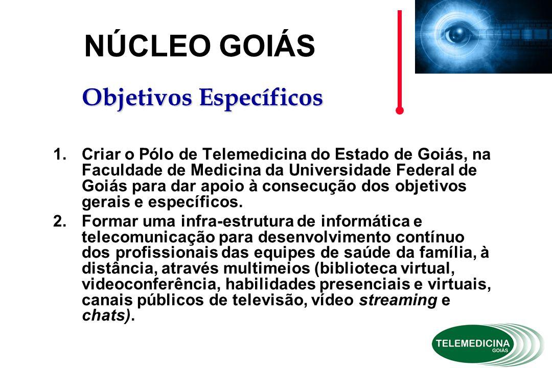 1.Criar o Pólo de Telemedicina do Estado de Goiás, na Faculdade de Medicina da Universidade Federal de Goiás para dar apoio à consecução dos objetivos gerais e específicos.