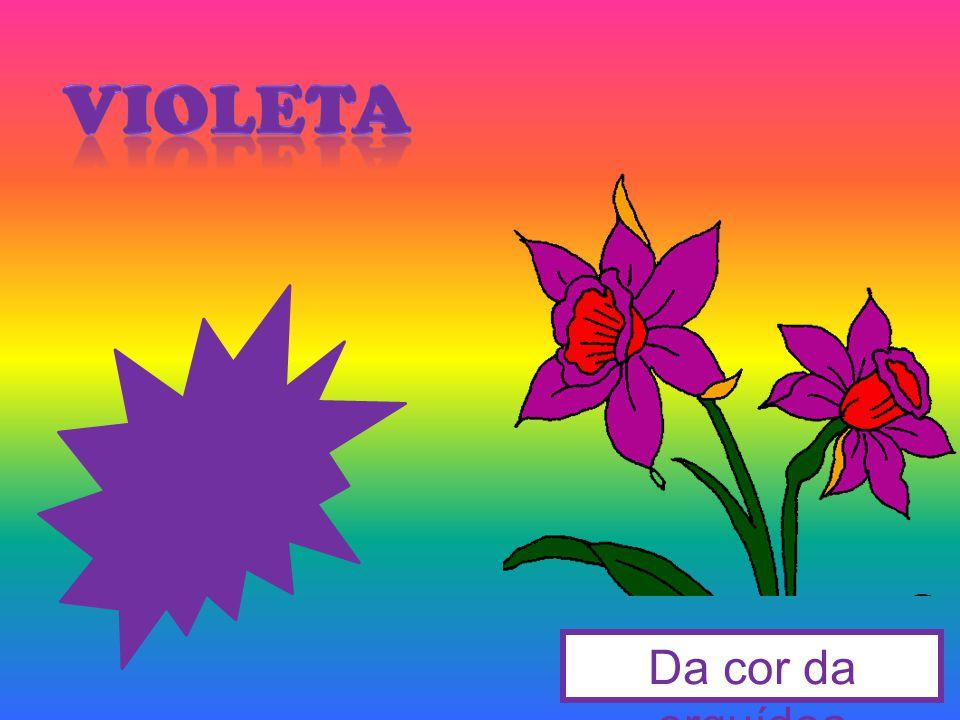 Da cor da orquídea