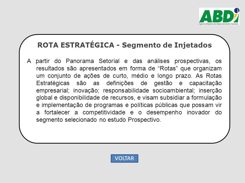 """ROTA ESTRATÉGICA - Segmento de Injetados A partir do Panorama Setorial e das análises prospectivas, os resultados são apresentados em forma de """"Rotas"""""""