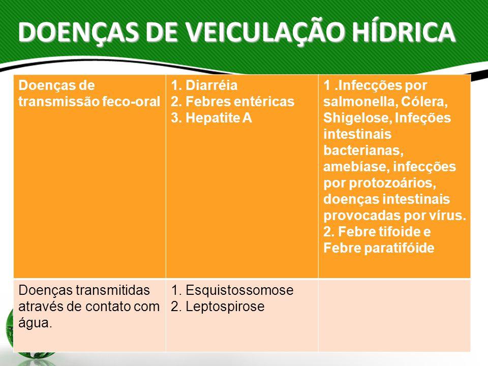 DOENÇAS DE VEICULAÇÃO HÍDRICA Doenças de transmissão feco-oral 1. Diarréia 2. Febres entéricas 3. Hepatite A 1.Infecções por salmonella, Cólera, Shige