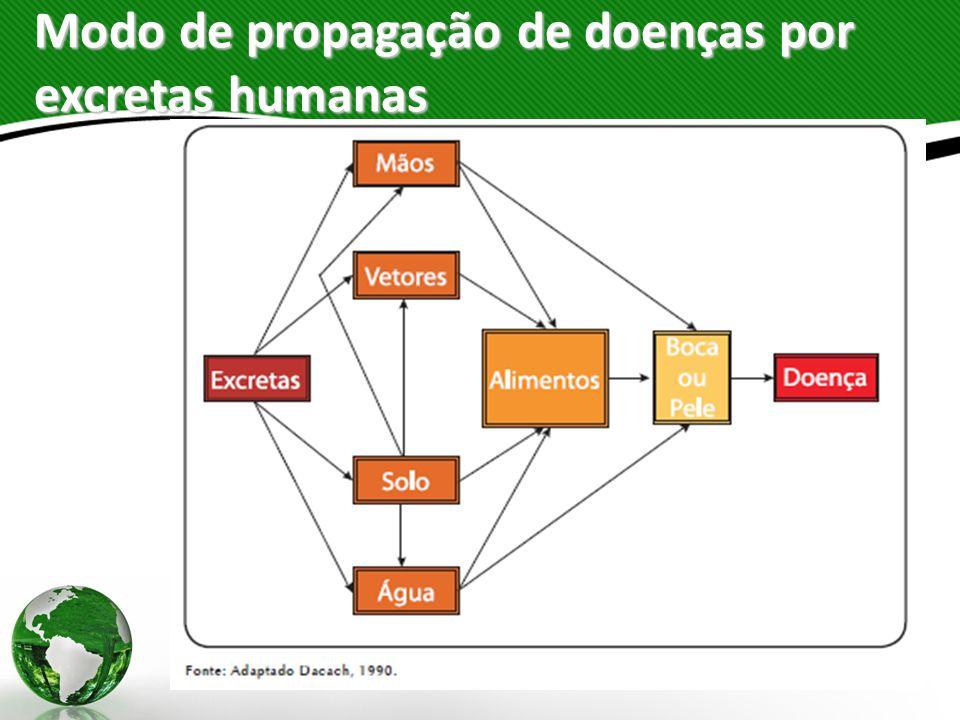 Modo de propagação de doenças por excretas humanas