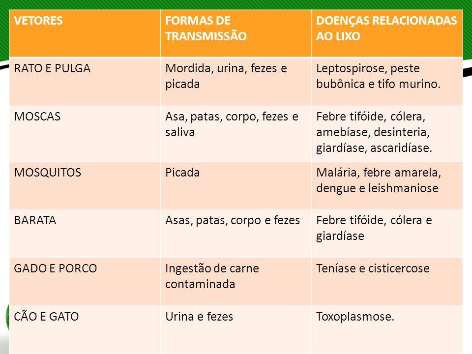 VETORESFORMAS DE TRANSMISSÃO DOENÇAS RELACIONADAS AO LIXO RATO E PULGAMordida, urina, fezes e picada Leptospirose, peste bubônica e tifo murino. MOSCA