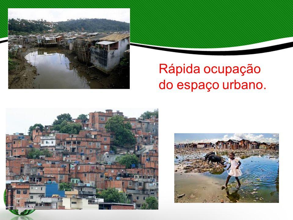 Atribuindo-se a degradação ambiental como a principal causadora de doenças relacionadas ao ambiente, considerou-se que os cuidados com o ambiente nas cidades deveria ser organizado e fiscalizado, de maneira a contribuir o bem-estar social.
