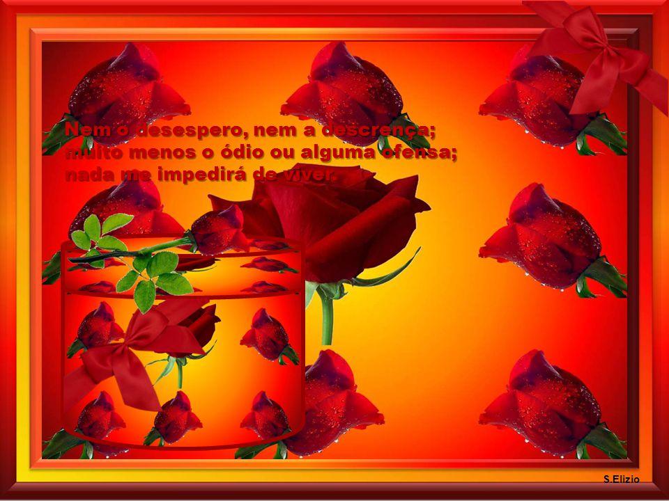 Nem o medo, nem a depressão; por mais que sofra o meu coração; nada me impedirá de sonhar. S.Elizio