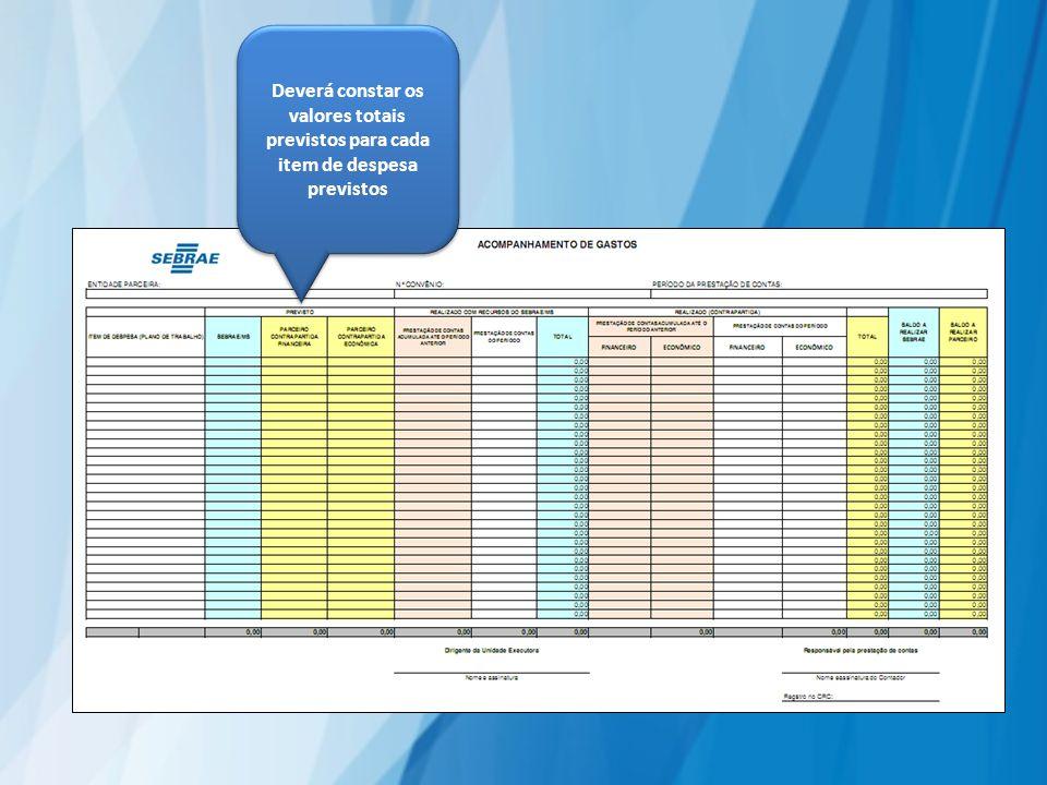 Deverá constar os valores totais previstos para cada item de despesa previstos