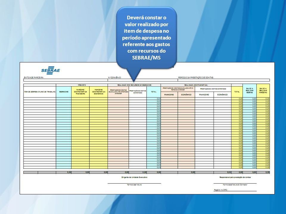 Deverá constar o valor realizado por item de despesa no período apresentado referente aos gastos com recursos do SEBRAE/MS