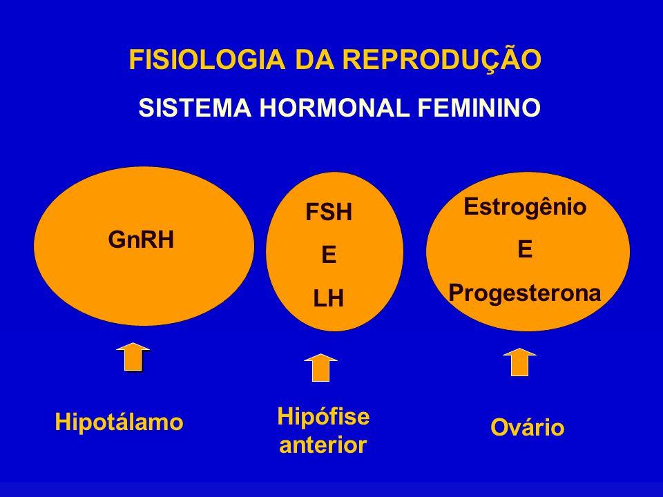 FISIOLOGIA DA REPRODUÇÃO O sistema nervoso identifica as mudanças do meio ambiente externo e interno, transmitindo a informação ao hipotálamo.