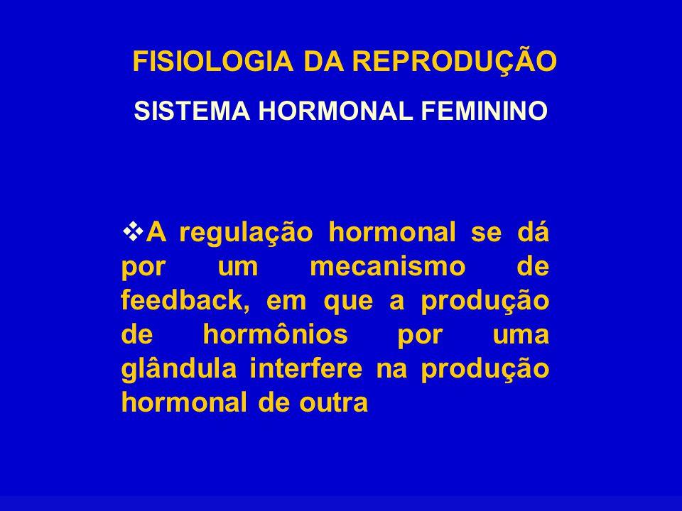 FISIOLOGIA DA REPRODUÇÃO SISTEMA HORMONAL FEMININO  Os diferentes hormônios são secretados em quantidades acentuadamente diferentes nas diversas fases do ciclo menstrual