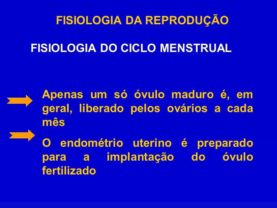 FISIOLOGIA DA REPRODUÇÃO FISIOLOGIA DO CICLO MENSTRUAL FASE PROLIFERATIVA OU FOLICULAR OU PRÉ-OVULATÓRIA Tem a duração aproximada de 10 a 14 dias.