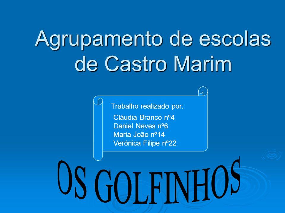 Agrupamento de escolas de Castro Marim Trabalho realizado por: Cláudia Branco nº4 Daniel Neves nº6 Maria João nº14 Verónica Filipe nº22