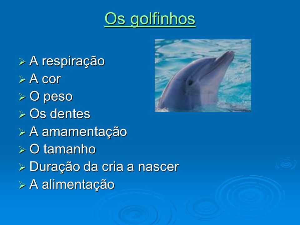 Os golfinhos Os golfinhos  A respiração  A cor  O peso  Os dentes  A amamentação  O tamanho  Duração da cria a nascer  A alimentação