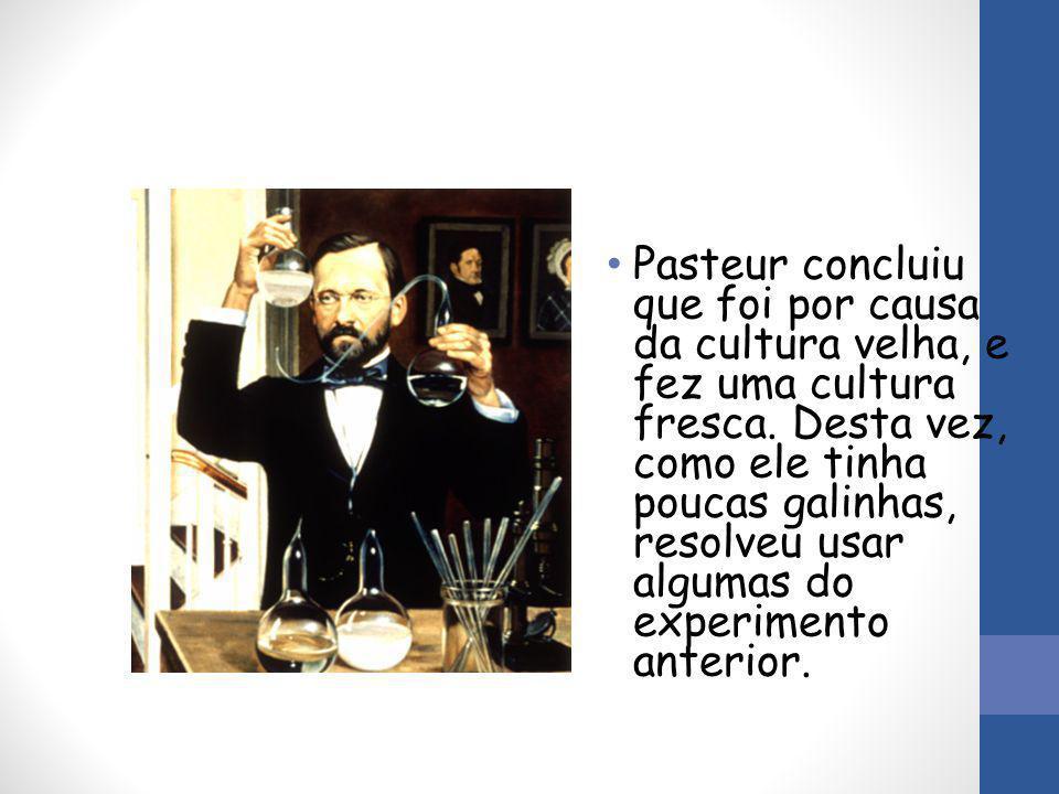 Pasteur concluiu que foi por causa da cultura velha, e fez uma cultura fresca. Desta vez, como ele tinha poucas galinhas, resolveu usar algumas do exp