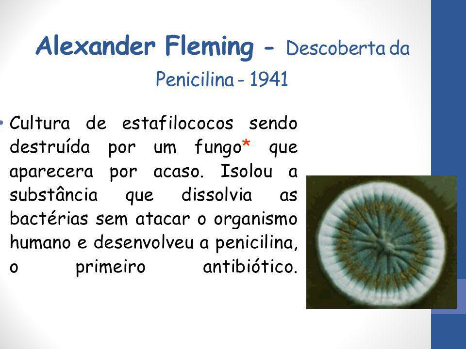 Alexander Fleming - Descoberta da Penicilina - 1941 Cultura de estafilococos sendo destruída por um fungo* que aparecera por acaso. Isolou a substânci