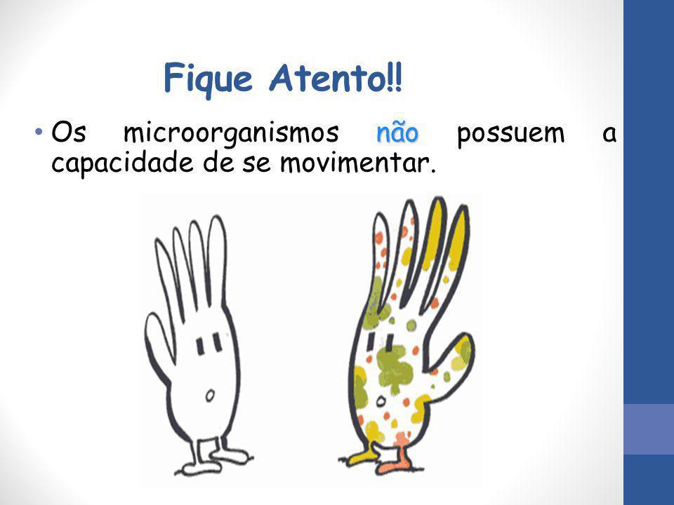 Fique Atento!! não Os microorganismos não possuem a capacidade de se movimentar.
