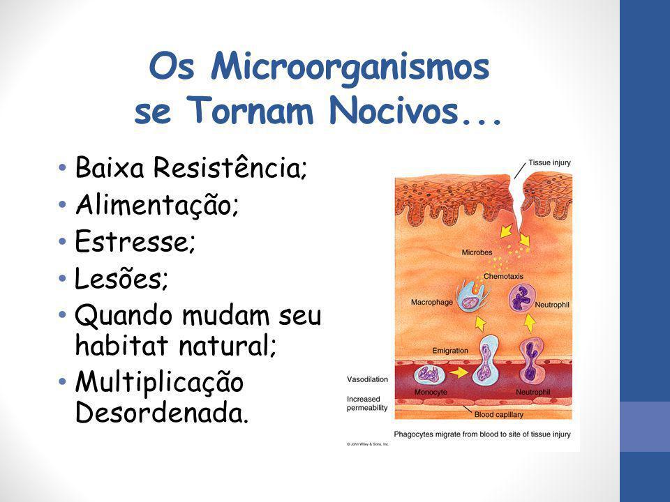 Os Microorganismos se Tornam Nocivos... Baixa Resistência; Alimentação; Estresse; Lesões; Quando mudam seu habitat natural; Multiplicação Desordenada.