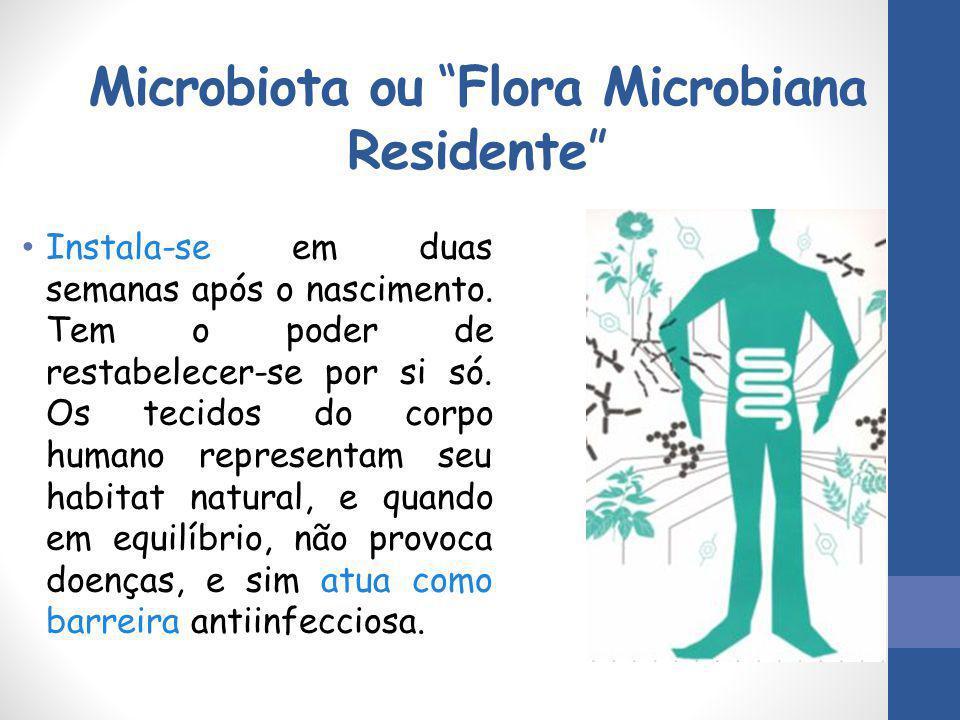 """Microbiota ou """"Flora Microbiana Residente"""" Instala-se em duas semanas após o nascimento. Tem o poder de restabelecer-se por si só. Os tecidos do corpo"""