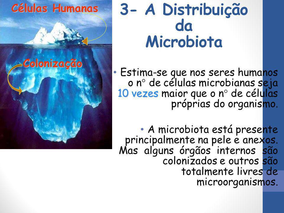 3- A Distribuição da Microbiota 10 vezes Estima-se que nos seres humanos o n° de células microbianas seja 10 vezes maior que o n° de células próprias