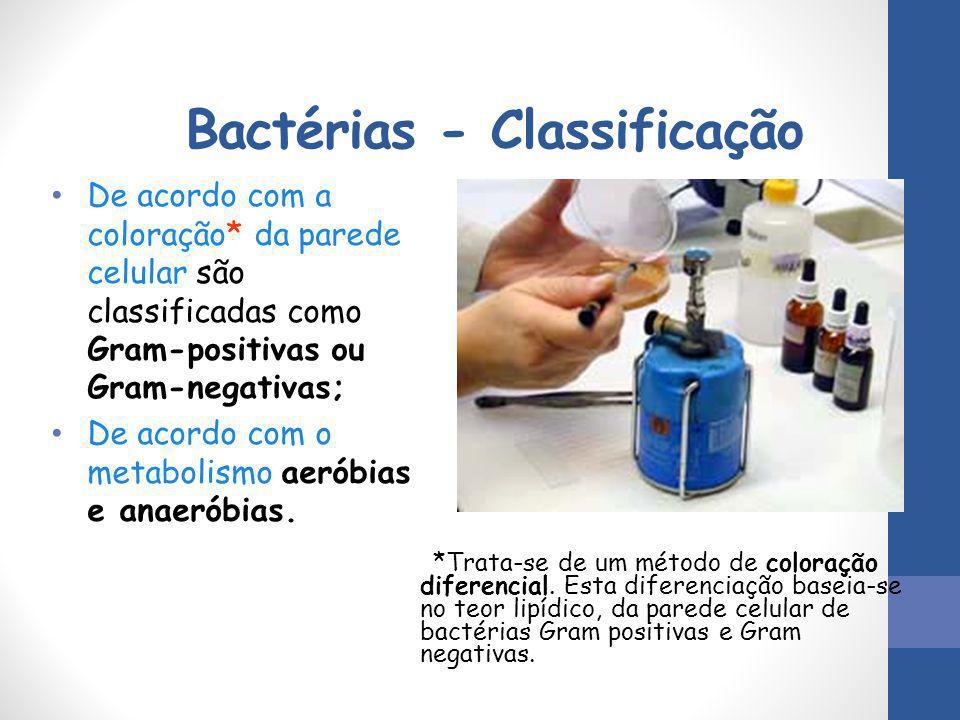 Bactérias - Classificação De acordo com a coloração* da parede celular são classificadas como Gram-positivas ou Gram-negativas; De acordo com o metabo