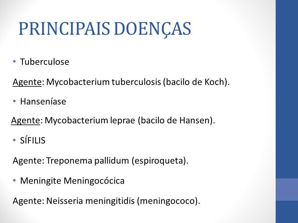 PRINCIPAIS DOENÇAS Tuberculose Agente: Mycobacterium tuberculosis (bacilo de Koch). Hanseníase Agente: Mycobacterium leprae (bacilo de Hansen). SÍFILI