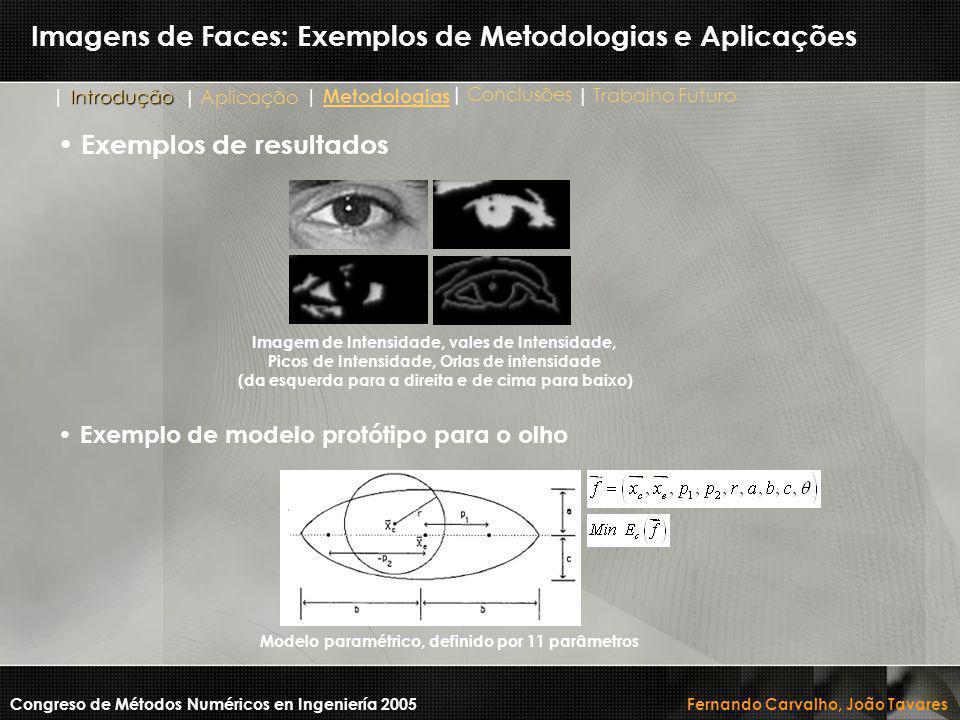 Imagens de Faces: Exemplos de Metodologias e Aplicações Congreso de Métodos Numéricos en Ingeniería 2005 Fernando Carvalho, João Tavares Imagem de Int