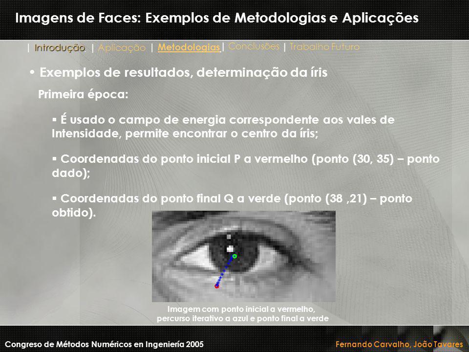 Imagens de Faces: Exemplos de Metodologias e Aplicações Primeira época:  É usado o campo de energia correspondente aos vales de Intensidade, permite