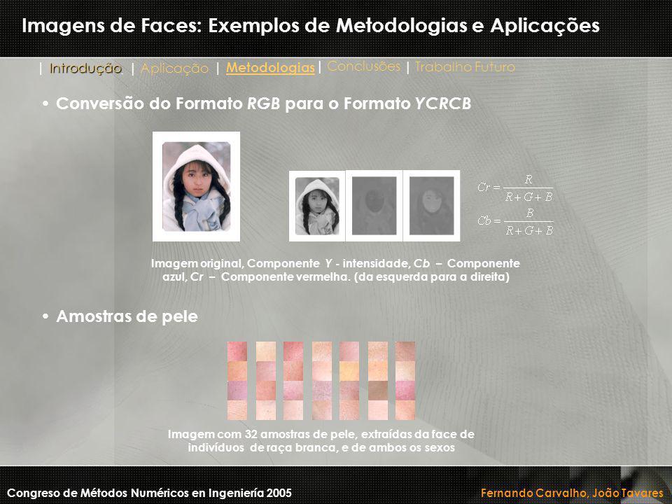 Imagens de Faces: Exemplos de Metodologias e Aplicações Conversão do Formato RGB para o Formato YCRCB Congreso de Métodos Numéricos en Ingeniería 2005