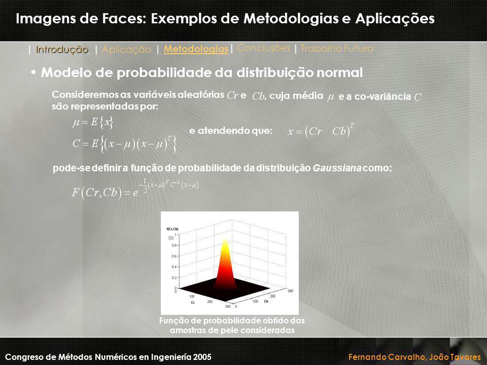 Imagens de Faces: Exemplos de Metodologias e Aplicações Congreso de Métodos Numéricos en Ingeniería 2005 Fernando Carvalho, João Tavares Modelo de pro