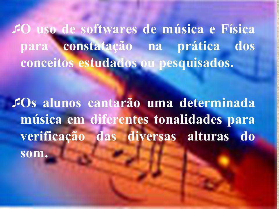  O uso de softwares de música e Física para constatação na prática dos conceitos estudados ou pesquisados.