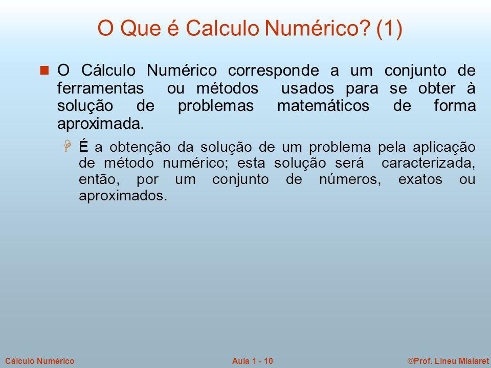 ©Prof. Lineu MialaretAula 1 - 10Cálculo Numérico O Que é Calculo Numérico? (1) n O Cálculo Numérico corresponde a um conjunto de ferramentas ou método