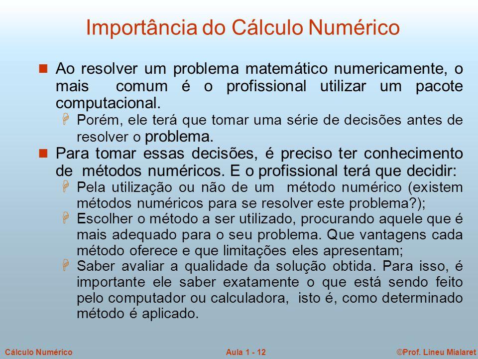 ©Prof. Lineu MialaretAula 1 - 12Cálculo Numérico Importância do Cálculo Numérico n Ao resolver um problema matemático numericamente, o mais comum é o