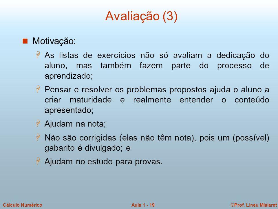 ©Prof. Lineu MialaretAula 1 - 19Cálculo Numérico Avaliação (3) n Motivação: H As listas de exercícios não só avaliam a dedicação do aluno, mas também