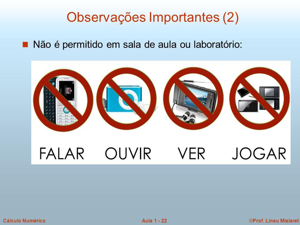 ©Prof. Lineu MialaretAula 1 - 22Cálculo Numérico Observações Importantes (2) n Não é permitido em sala de aula ou laboratório: