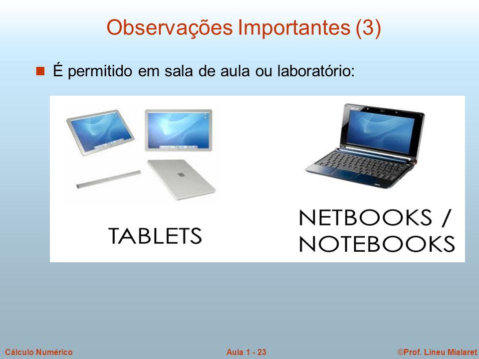 ©Prof. Lineu MialaretAula 1 - 23Cálculo Numérico Observações Importantes (3) n É permitido em sala de aula ou laboratório:
