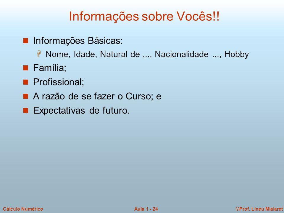 ©Prof. Lineu MialaretAula 1 - 24Cálculo Numérico Informações sobre Vocês!! n Informações Básicas: H Nome, Idade, Natural de..., Nacionalidade..., Hobb