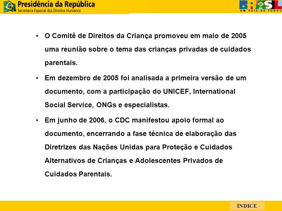 ÍNDICE O Comitê de Direitos da Criança promoveu em maio de 2005 uma reunião sobre o tema das crianças privadas de cuidados parentais.