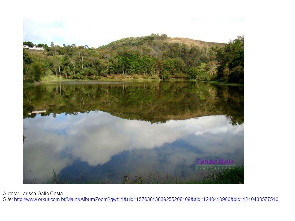Autora: Larissa Gallo Costa. Site: http://www.orkut.com.br/Main#AlbumZoom?gwt=1&uid=15763843839255208109&aid=1240410900&pid=1240438577510http://www.or